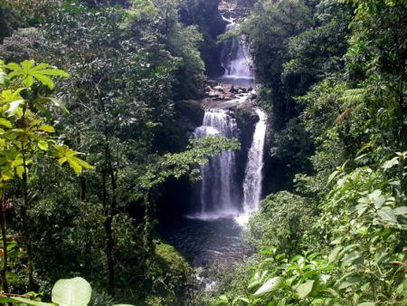 Cascada en Rara Avis CostaRica