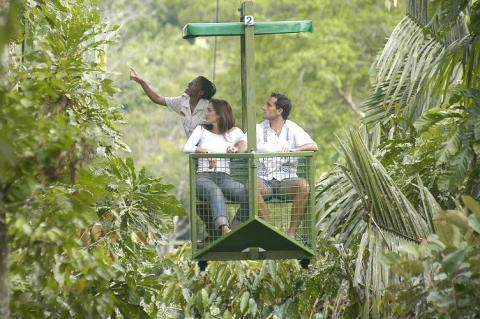 La selva a vista de pájaro (Costa Rica)