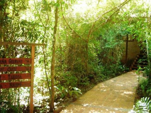la aldea de la selva