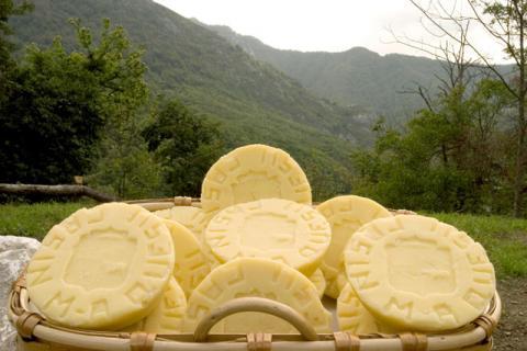 La ruta de los quesos de Asturias (España) (I)
