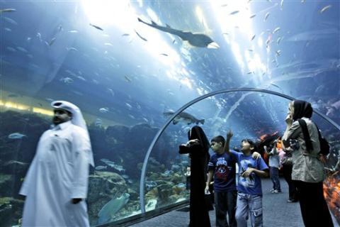 Una fuga en el tanque de los tiburones obliga a evacuar un centro comercial en Dubai class=