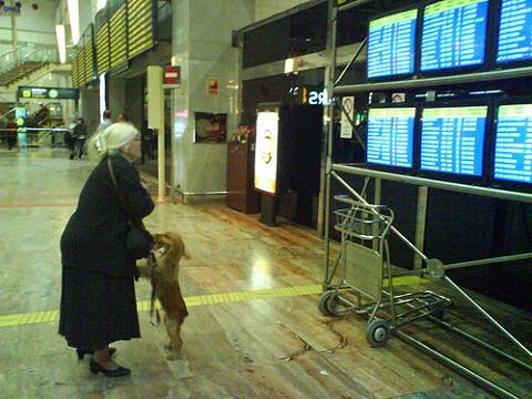 Aumentan los viajeros en los aeropuertos españoles