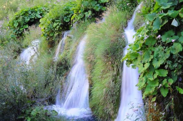 parque natural europeo
